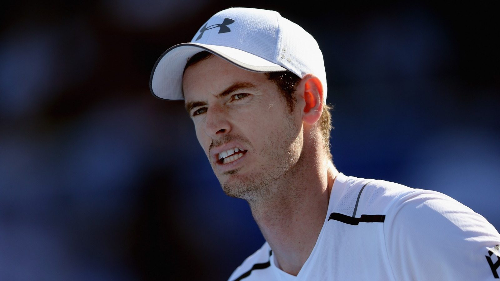 Andy_Murray_-_Tennis_Player